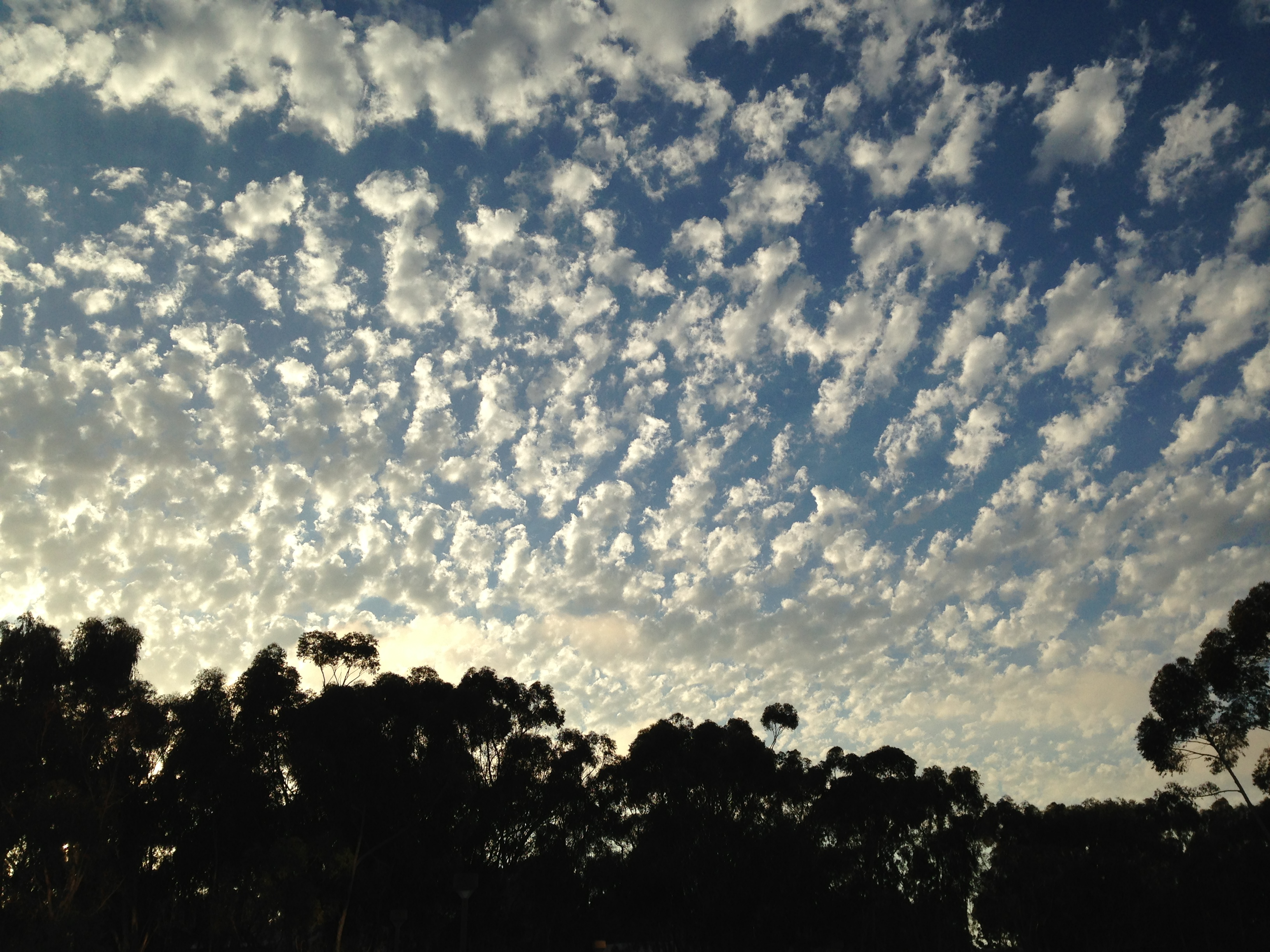 Clouds at UCSD 4 2013-08-24