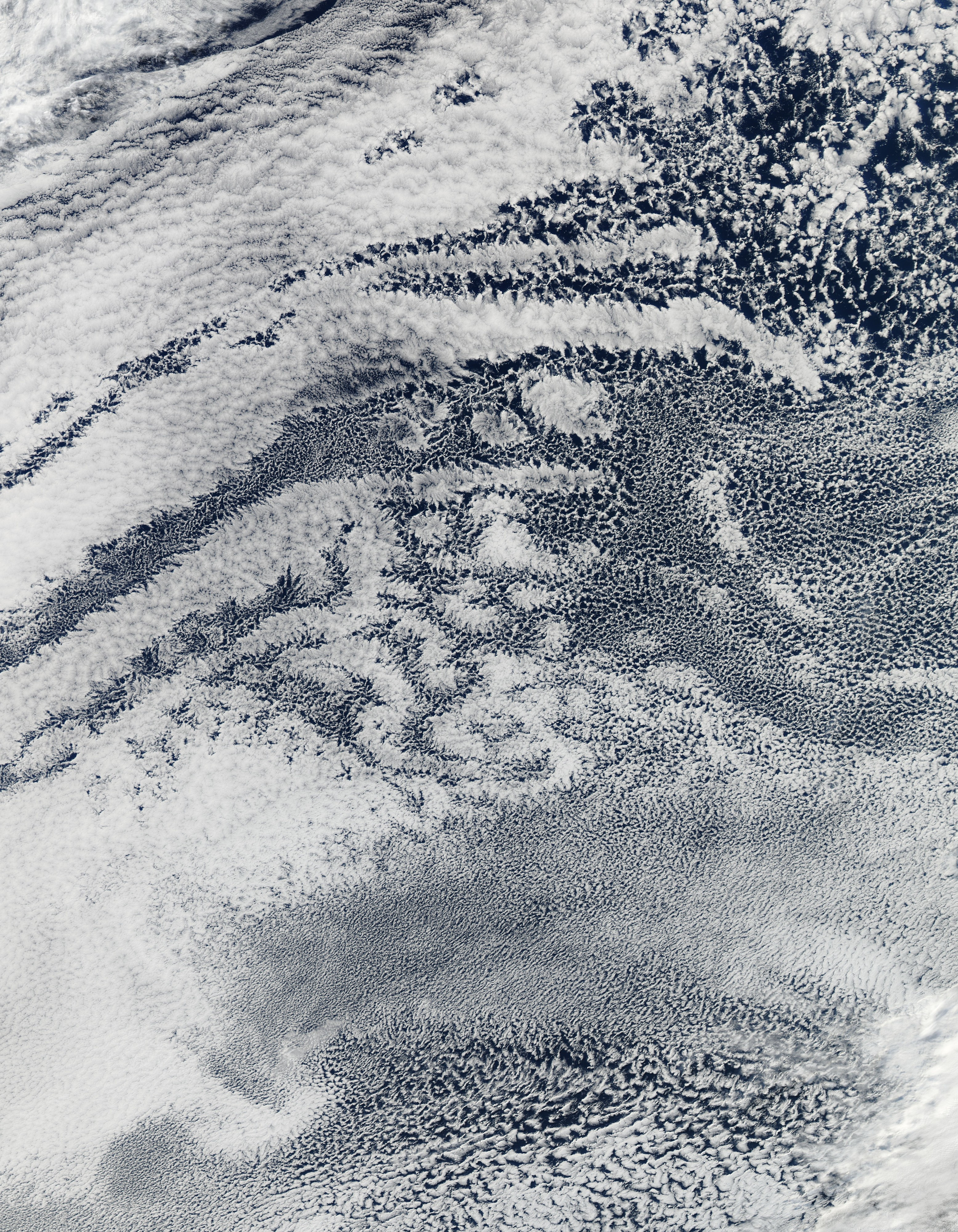 Open- and Closed-Cell Clouds over the Pacific Ocean