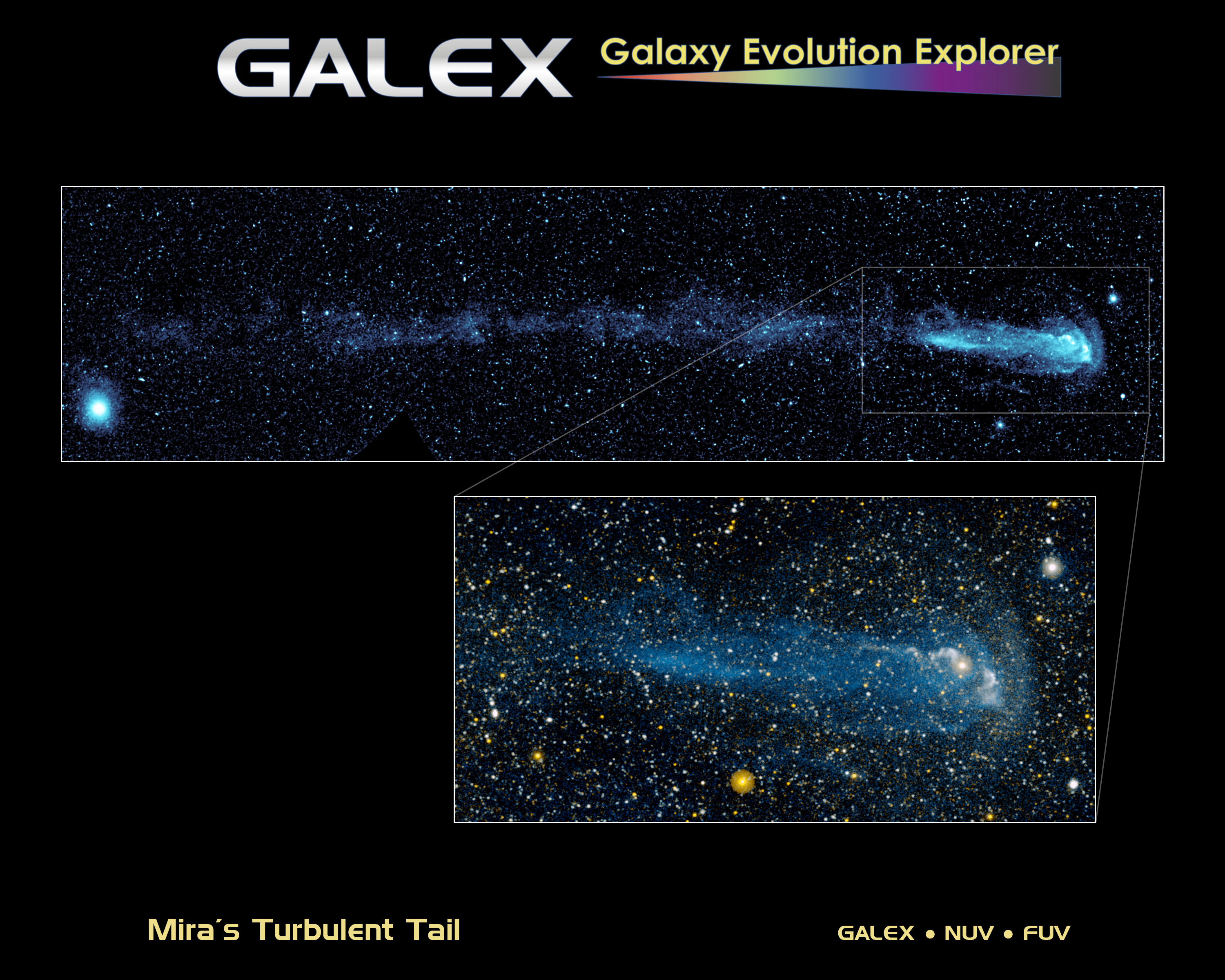 GALEX UV Images of Mira