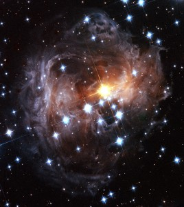 V838 Monocerotis light echo (HST, November 2005)