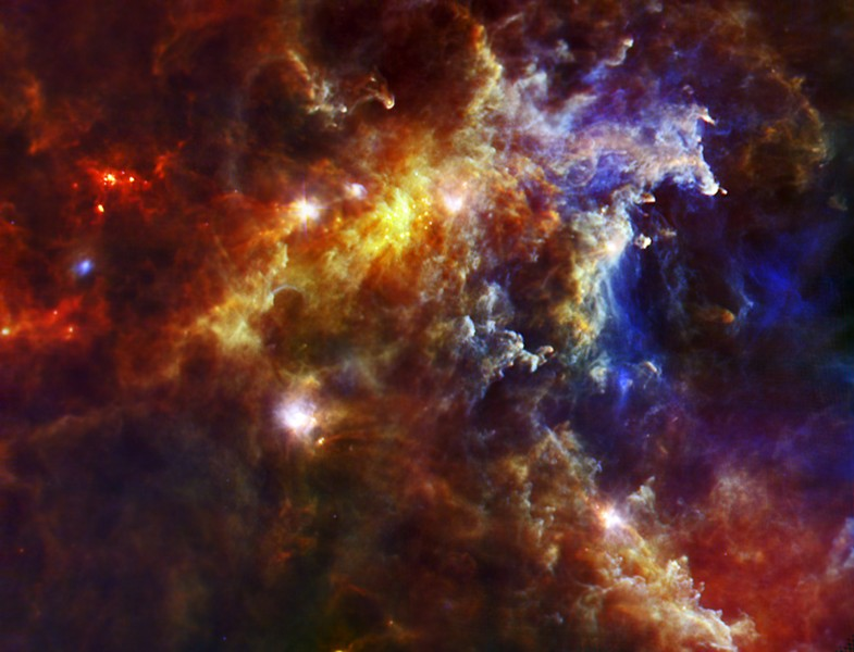 Embryonic Stars in the Rosette Nebula