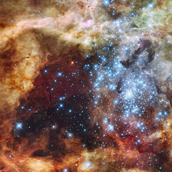 Grand star-forming region R136 in NGC 2070 (visible and ultraviolet, captured by the Hubble Space Telescope)