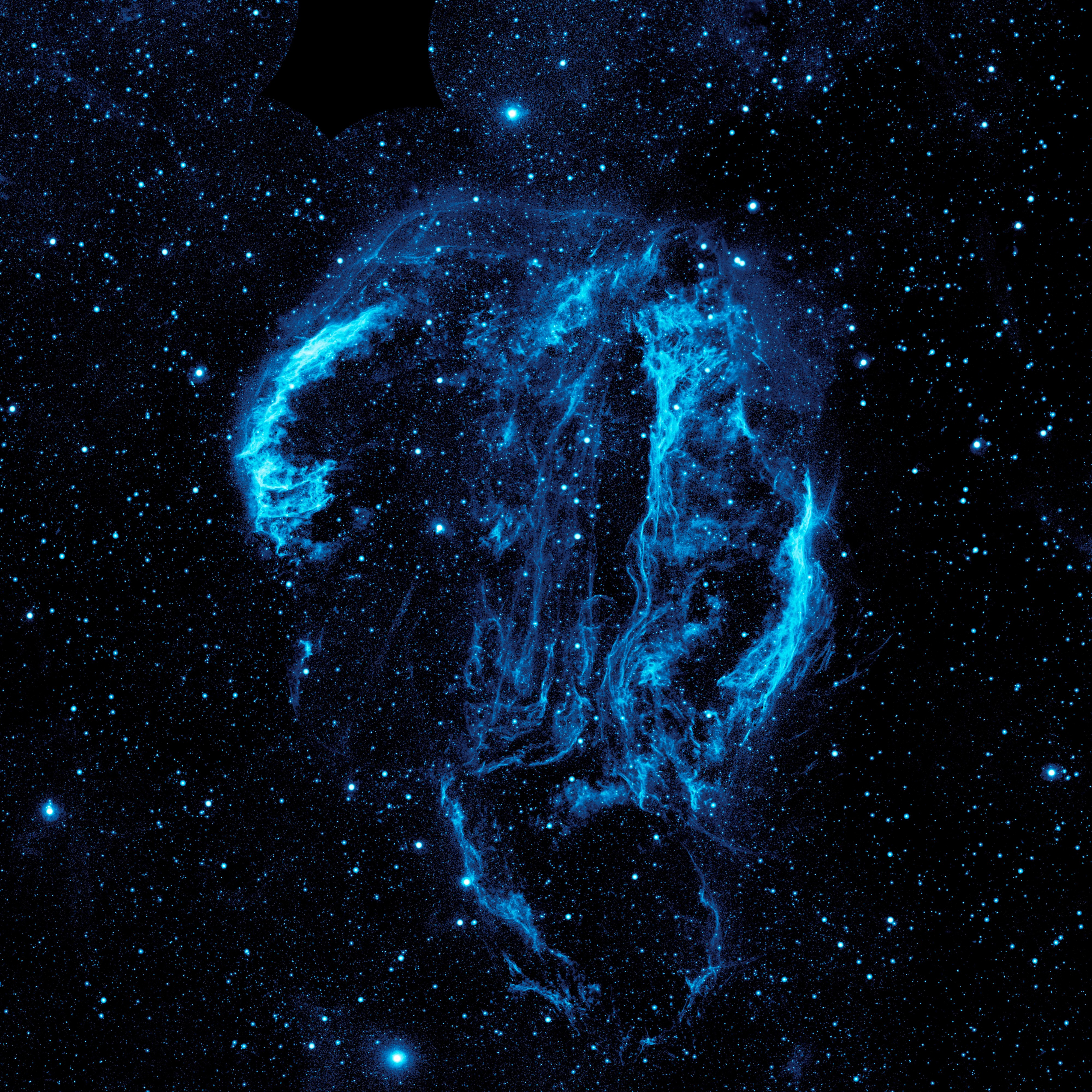 Ultraviolet image of the Cygnus Loop Nebula
