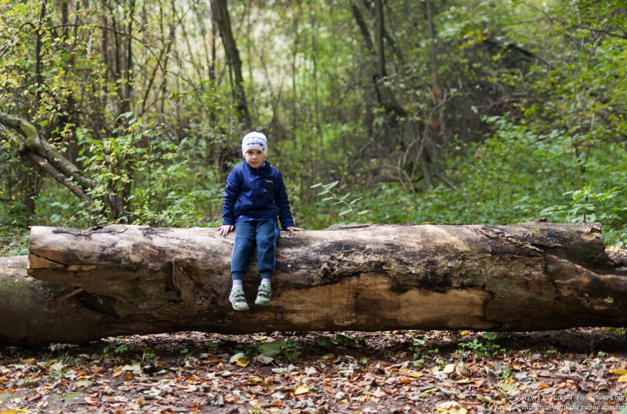 a 5-year-old boy photographed by Serhiy Lvivsky in October 2018 using a Sigma 50mm F1.4 DG HSM Art lens, picture 1