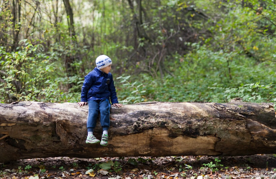 a 5-year-old boy photographed by Serhiy Lvivsky in October 2018 using a Sigma 50mm F1.4 DG HSM Art lens, picture 2