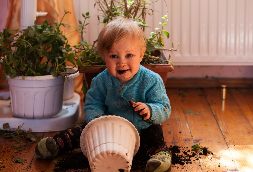 a 9-month-old boy tasting soil in March 2014