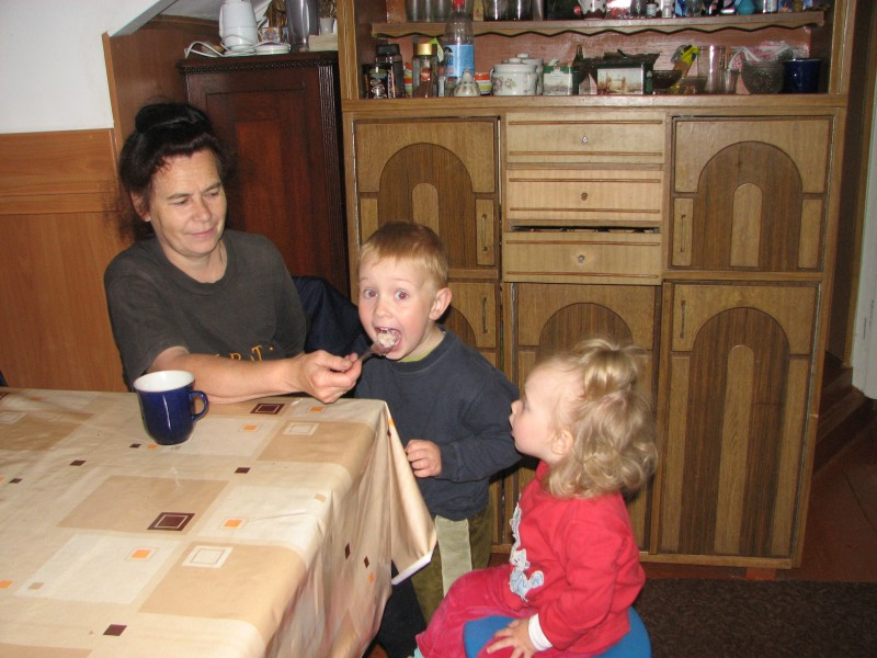 Grandmother is feeding her small grandchildren, picture 1