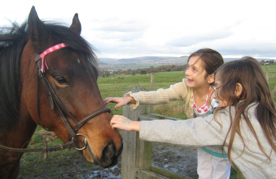 my girls stroking a horse