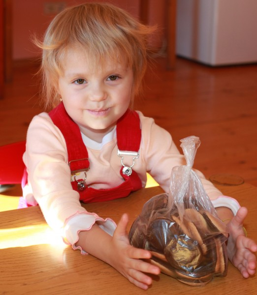 a portrait of a cute blond charming Catholic child girl, photo 1