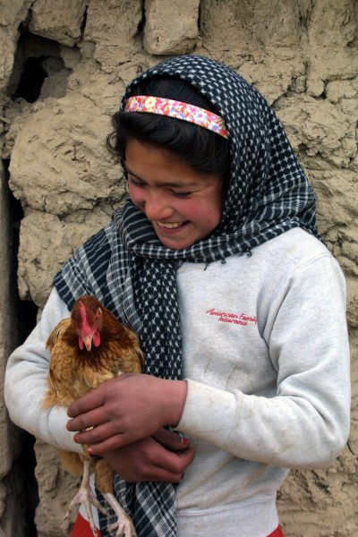 Girl with chicken afghanistan