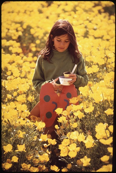 KATHY MARTIN CARRYING A PLANT HOME FROM SCHOOL THROUGH A FIELD OF YELLOW POPPIES - NARA - 542703