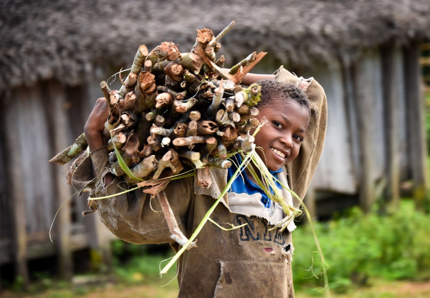 Sticks for Home, Madagascar (23285009832)