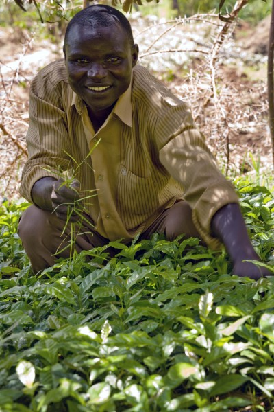 A man tends to his newly planted tree seedlings in a nursery in Arokwo Village, Kapchorwa,Uganda, on 11th March, 2009. (10662551583)