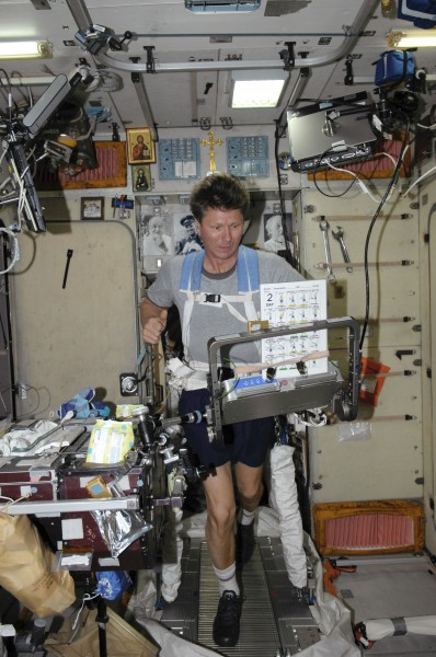 ISS-19 Gennady Padalka exercises on the TVIS in the Zvezda Service Module