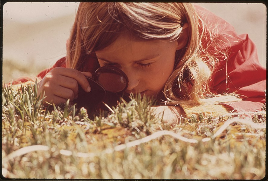 GIRL USES A MAGNIFYING GLASS TO STUDY PLANT LIFE IN THE TUNDRA OF THE ROCKY MOUNTAINS. THE DENVER PTA SPONSORED A... - NARA - 543740