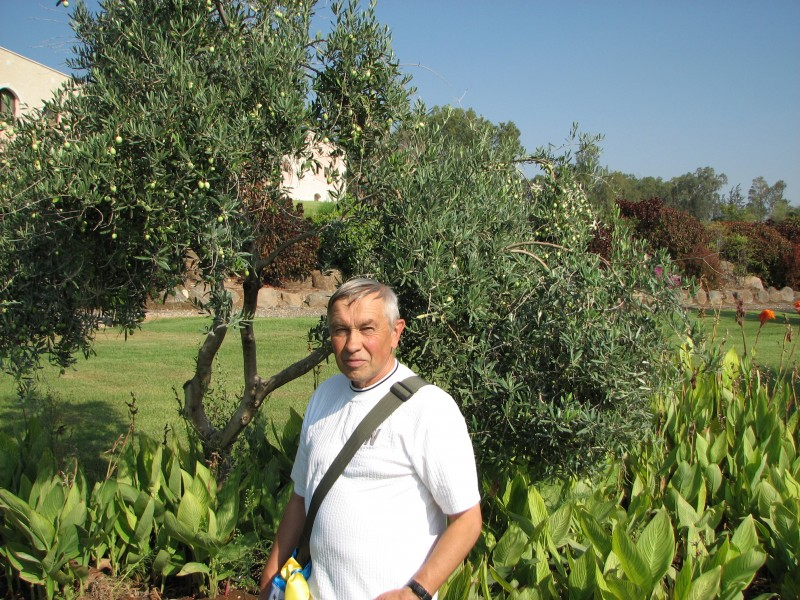 A man on the Mount where the most famous Sermon was taught by Jesus, Galilee, Israel, picture 5