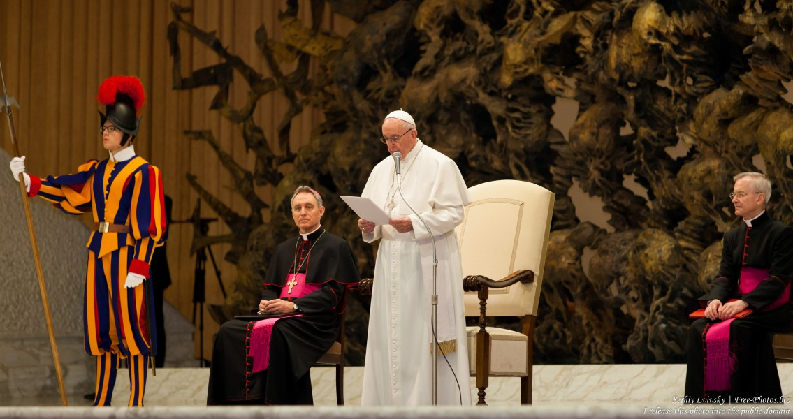 Pope Francis photographed in the Paul VI audience hall in January 2016 by Serhiy Lvivsky, picture 4