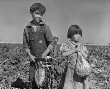 Children and Sugar beets Nebraska 1940