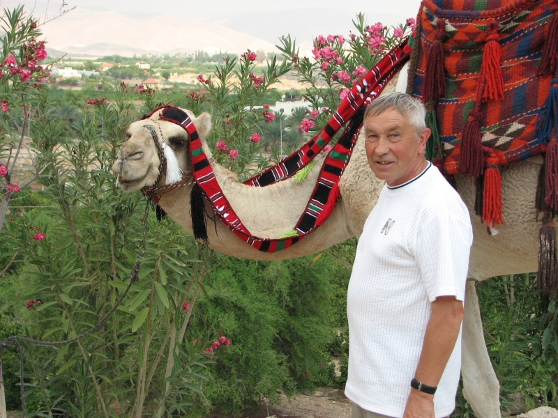 A man with a camel in Jericho, Israel, picture 6.