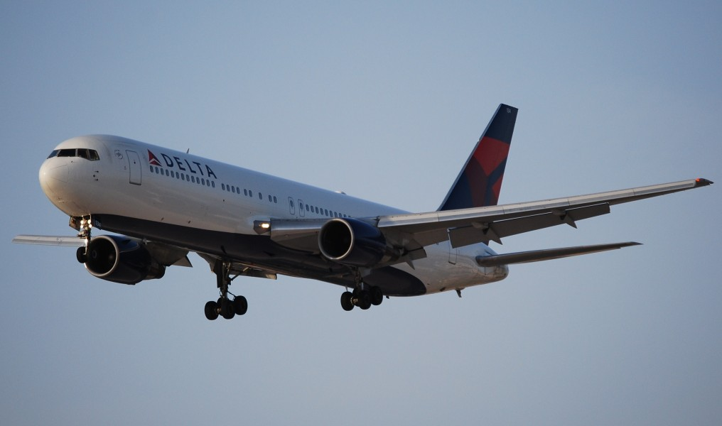 DELTA AIRLINES (2484860053)