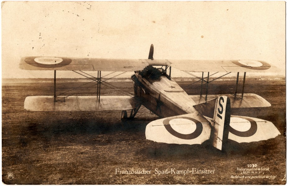 French Spad - photo