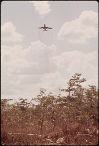 JET TAKES OFF FROM MIAMI-DADE JETPORT IN EVERGLADES - NARA - 544491