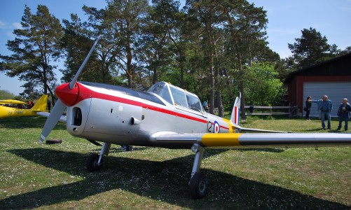 SE-FNP (WP867) DHC-1 Chipmunk parked at Borglanda
