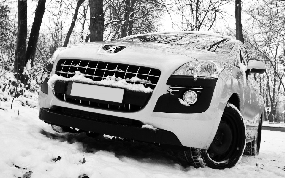 Peugeot 3008 in the snow