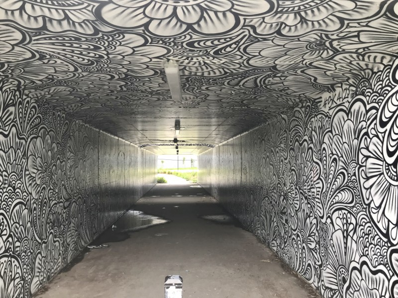 Subway (underpass) in Robina, Queensland 01