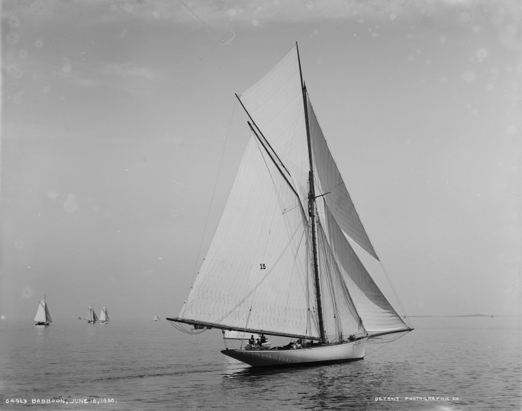 Sloop Babboon-1
