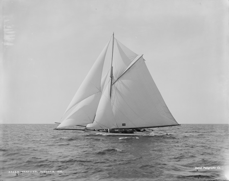 Sloop Harpoon-1