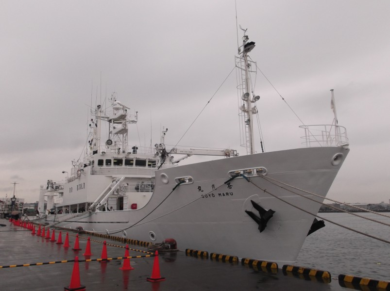 Soyo-maru, an investigation ship of National Research Institute of Fisheries Science,Fisheries Research Agency, at the Kanazawa Pier of Yokohama Port