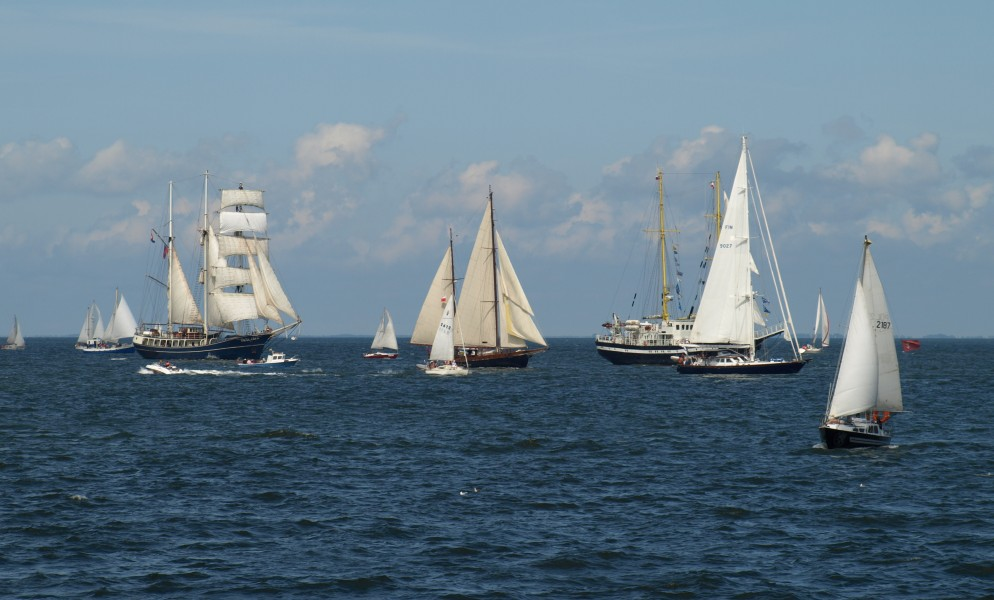 Tall Ships Races, Gdynia, 20090705, 1