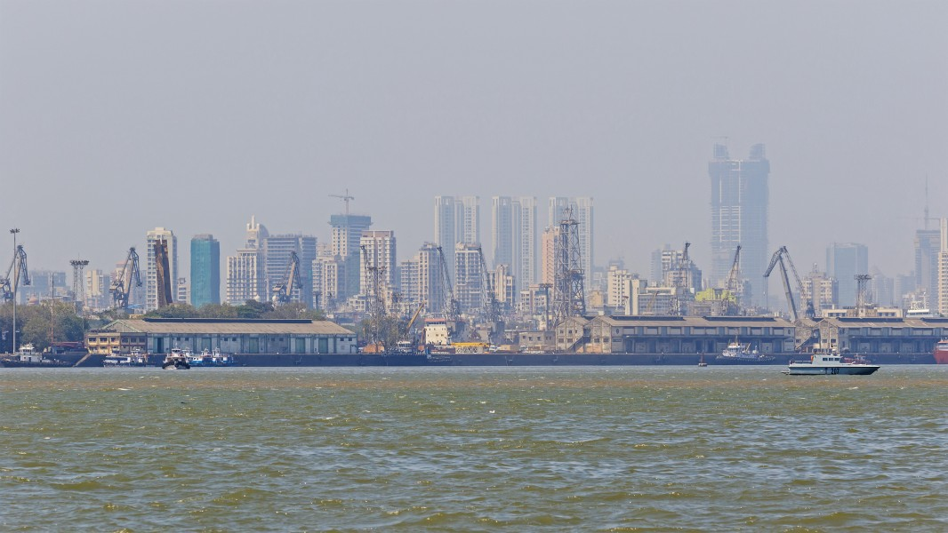 Thane Creek and Elephanta Island 03-2016 - img02 Mumbai Harbour