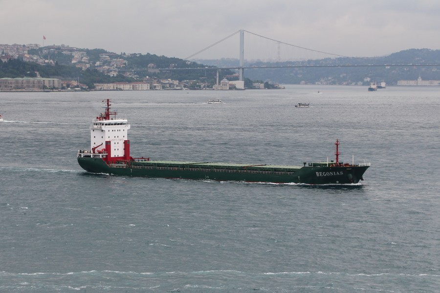 The Begonias on the Bosphorus