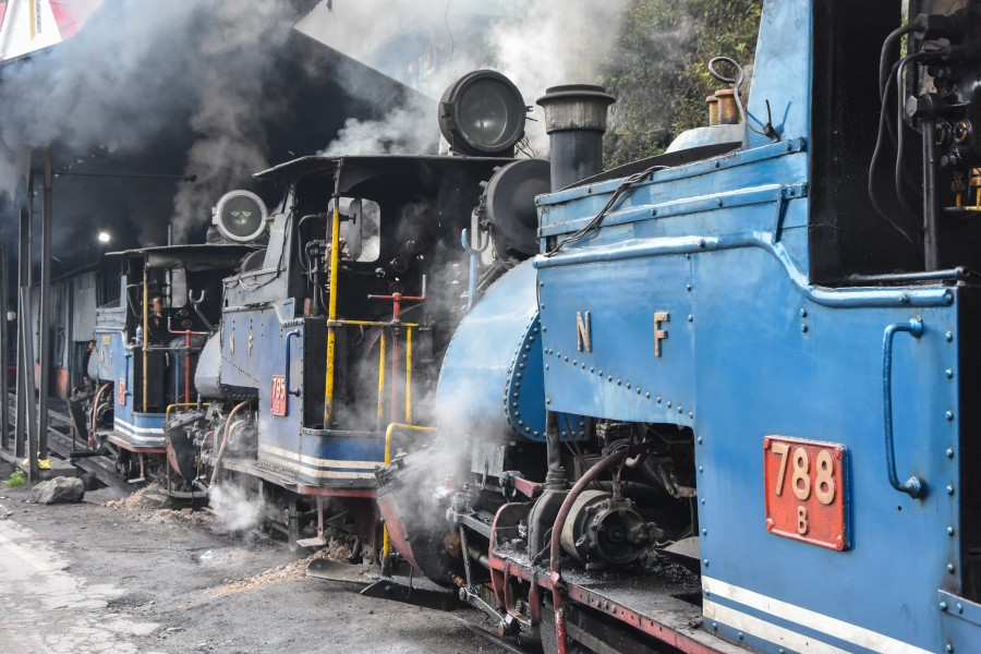 Darjeeling Himalayan Railway,toy train (2)