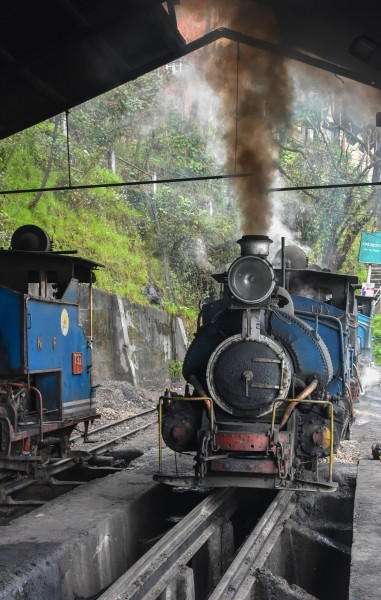 Darjeeling Himalayan Railway,toy train (7)